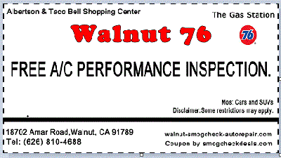Performance-Inspection-coupon